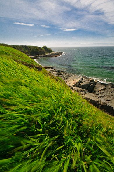 The cliffs and rocky shores below Beacon Hill Park, Victoria BC (it is just this green and gorgeous, and you stand on those rocks at the shore and practically get blown away <3)
