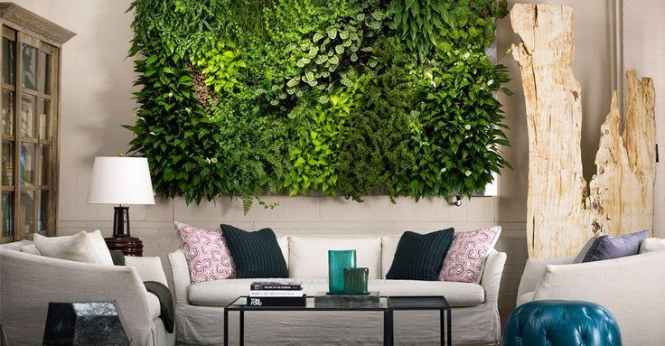 Greenwalls Living Wall