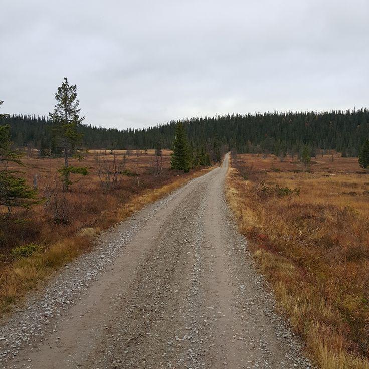 Den endeløse landevei..