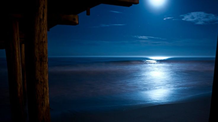 Loving this. ~Beethoven Moonlight Sonata with Relaxing Nature Sounds [ Sleep Music ]