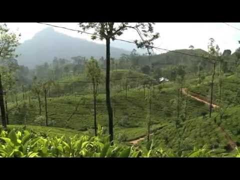 Destinations | Sri Lanka Travel Blog