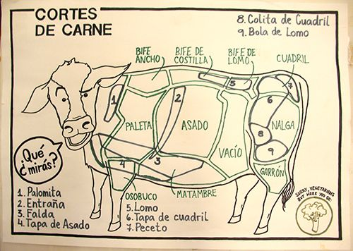 Meat is cut differently in Argentina, as seen in this diagram. Asado – Ribs, Asado de Tira – Short Ribs, Bife de chorizo – strip steak (NY Strip), Bife/bola de lomo – Tenderloin, Colita de Cuadril – Tri-tip, Cuadril – Rump Steak, Entraña – Skirt steak, Matambre – Flank Steak (long, thin cut), Ojo de bife – Ribeye, Pecho – brisket, Vacío – Flank