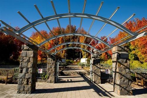 Orange botanical gardens, Orange NSW. Autumn colours galore!