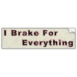 I Brake For Turtles