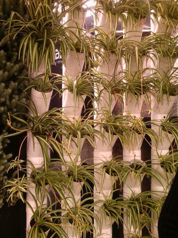 Jard n vertical con tubos pvc jardin pinterest for Imagenes de jardines verticales