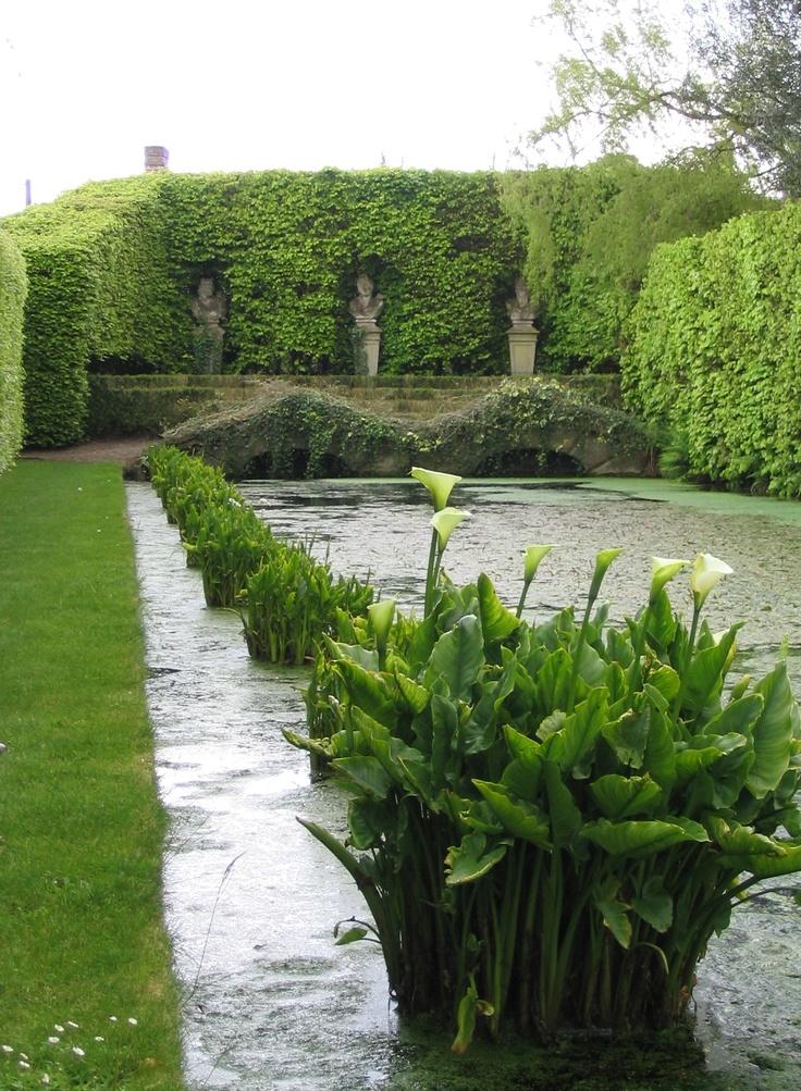 Shute House Gardens Garden Ftempo