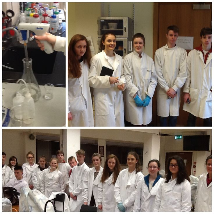 TY students in labs