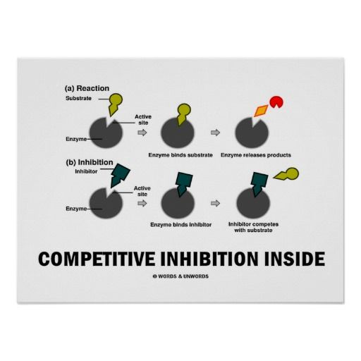 "Competitive Inhibition Inside (Enzyme Kinetics) Posters #competitive #inhibition #inside #enzyme #kinetics #substrate #wordsandunwords #geek #humor #funny Here's a poster for anyone with enzyme kinetics attitude!  Featuring ""Competitive Inhibition Inside""."