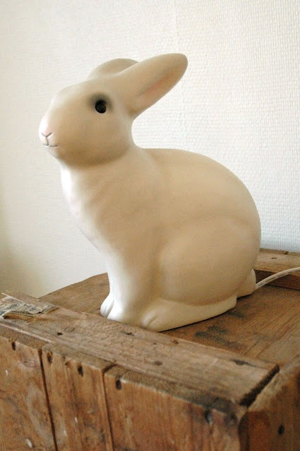 my rabbit lamp