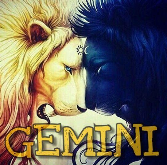 Zodiac sign Art #gemini #lions two sides