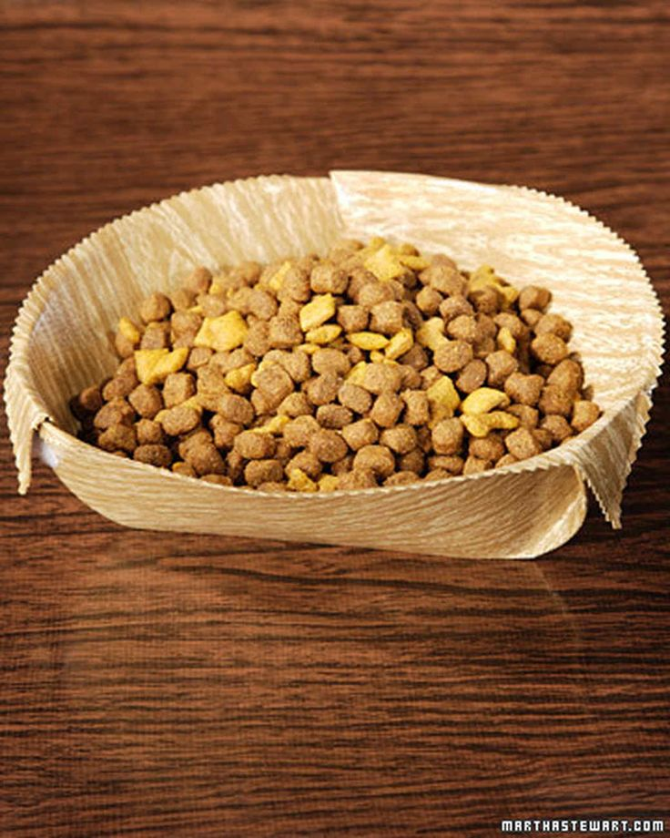 This easy-to-make bowl is the perfect traveling companion for your dog.