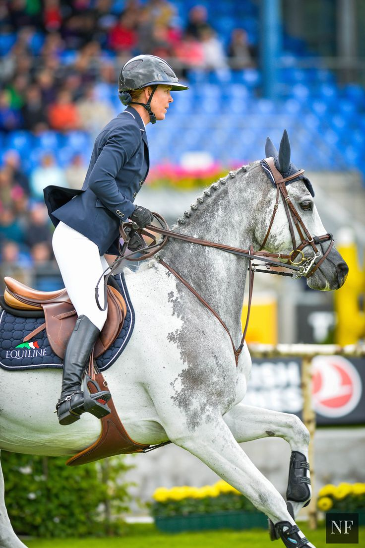 Day 2 at CHIO Aachen 2015 - Lauren Hough | What gorgeous coloring!!