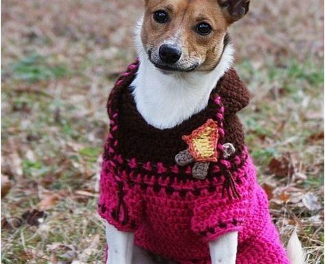 20 best Häkeln images on Pinterest | Kleine hunde, Stricken häkeln ...