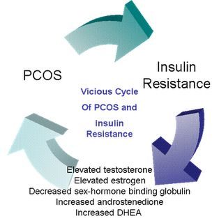 The vicious PCOS cycle