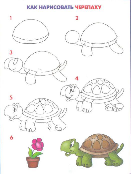Schildpad tekenen met kleuters / Bezimeni