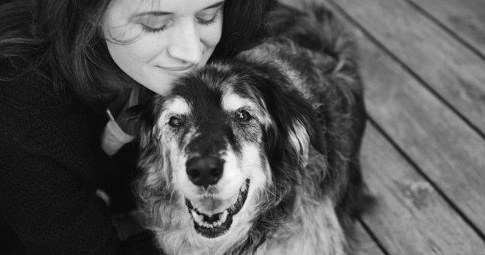 18  άνθρωποι φωτογραφίζονται με τους σκύλους τους- για τελευταία φορά