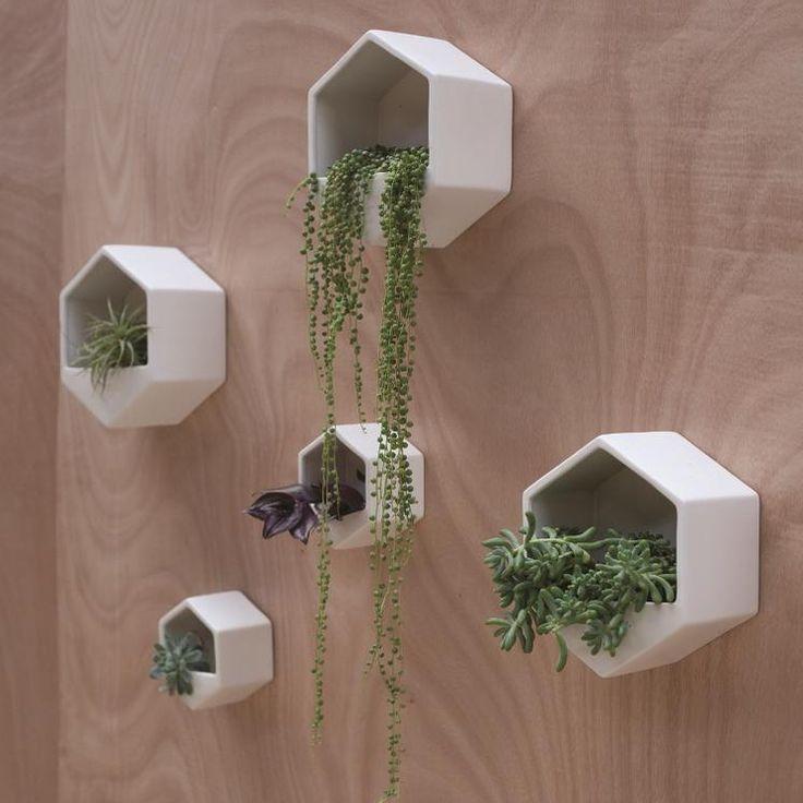 George & Co. Hexagon Wall Hung Planter | ponúka Mai in George
