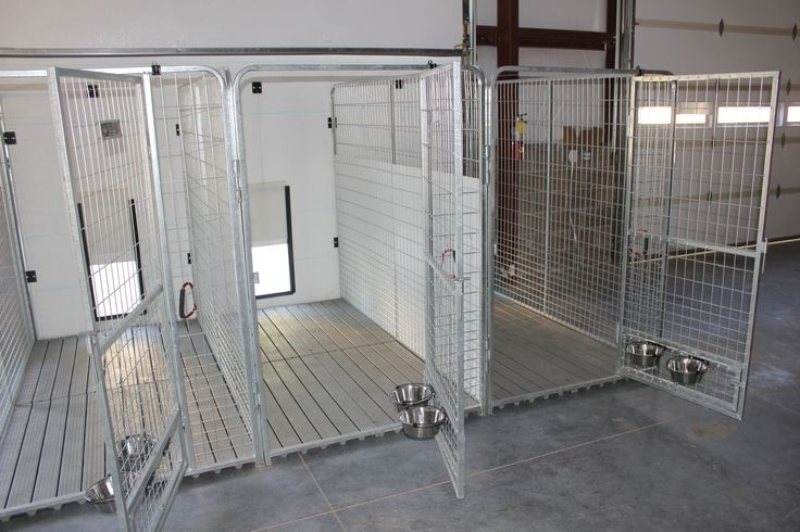 Indoor dog kennel system kennels ideal for indoor for Building dog kennels for breeding