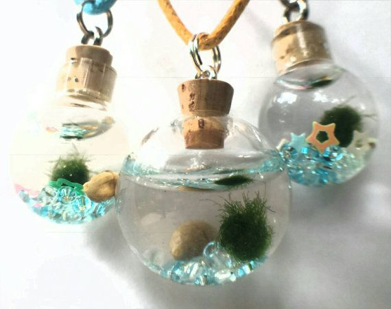 Check out this item in my Etsy shop https://www.etsy.com/listing/387244018/marimo-necklace-with-marimo-moss-ball