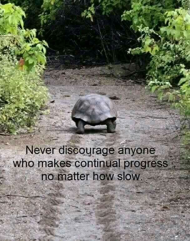 Never discourage anyone who makes continual progress no matter how slow.
