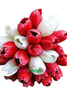 Lale Çiçeği Anlamı