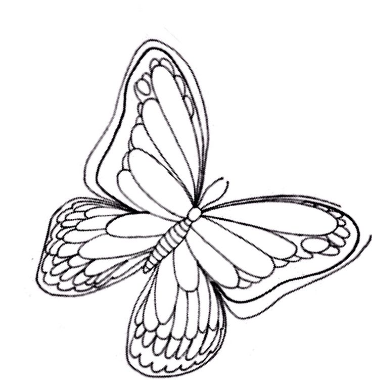 589 best Coloring pages & Basic patterns/templates for