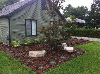 Straight lines, grasses, boulders, mulch. Modern Landscape design.  Completed by Leaf Garden Design Inc.  | florence Ave