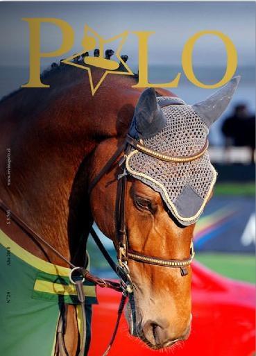 Edición 29, Revista POLO