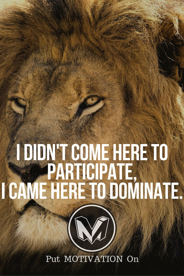 i didn't come here to participate, i came to dominate | Posted By: NewHowToLoseBellyFat.com