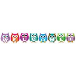 Colorful Owl Welcome Bulletin Board Set. Welcome your students with these adorable owls!