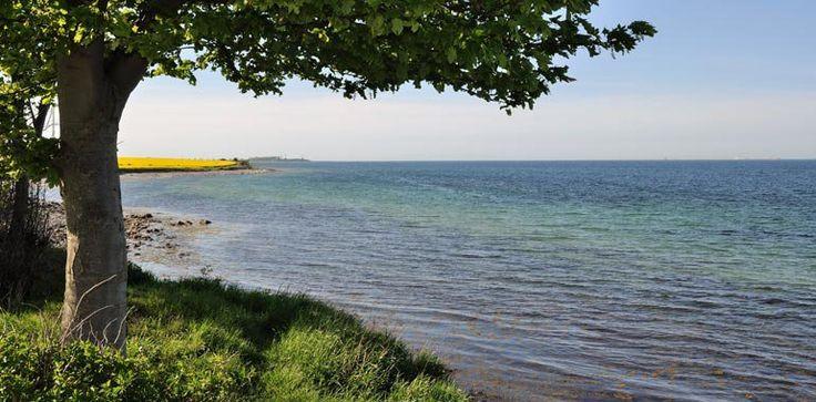 Wir bieten Meer - Ferien auf dem Bauernhof - Presener Deichkrone