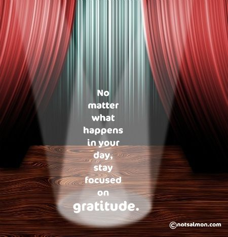 Stay focusedInspiring Quotes,  Theatres Curtains, Stay Focused, Life Hackers, Words Quotes Lov, Notsalmoncom Karen, Gratitude Quotes, Theater Curtains, Inspiration Quotes
