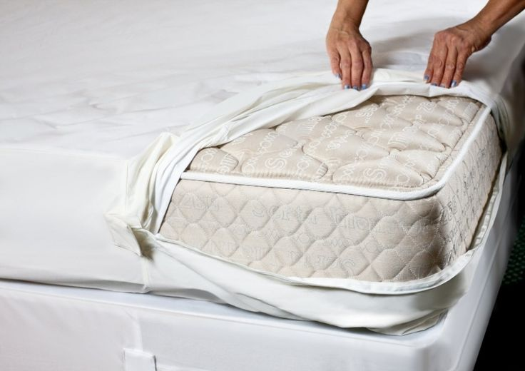 how to clean bed bugs out of mattress