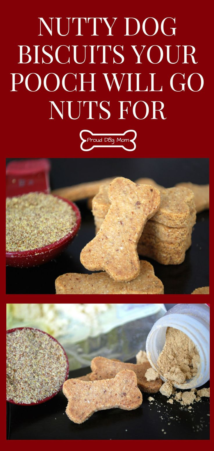 Nutty Dog Biscuits Your Pooch Will Go Nuts For | DIY Dog Treats | Homemade Dog Treats | Gluten-Free Dog Treats |