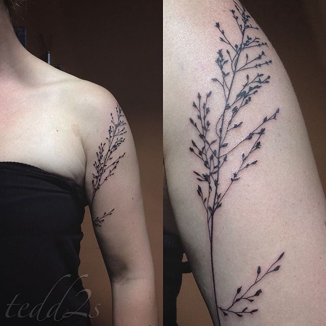 First piece of my shadows tattoo project, a piece of prairie dropseed found in a…