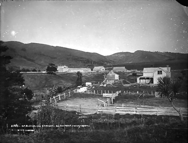 Object: Mr Buchanan's Station, Gladstone, Wairarapa   Collections Online - Museum of New Zealand Te Papa Tongarewa
