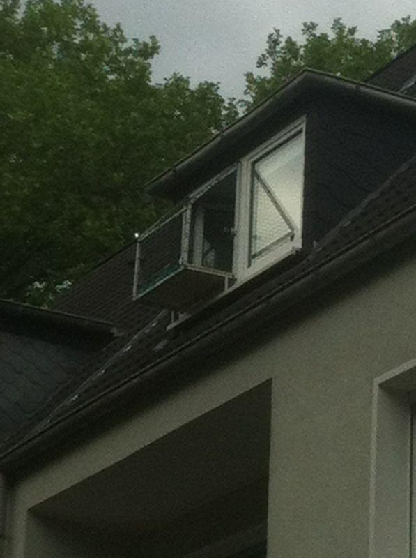 Mobiler Katzenbalkon Katzenbalkon Fur Fenster Katzennetz Fur