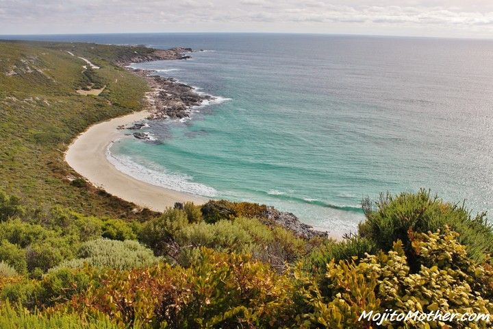 Here are my top 12 reasons why you need to visit Perth in Western Australia when travelling down under...