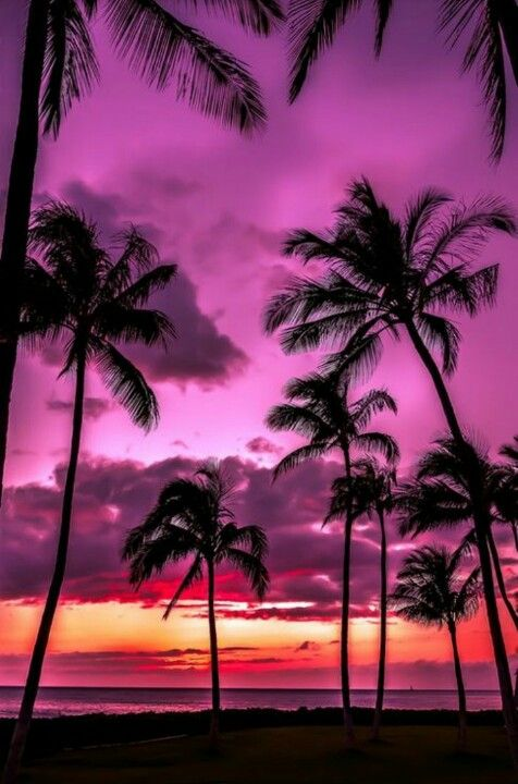 Tahitian sun...