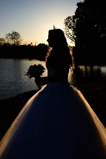 Princess Silhouette, Sweet 16, Http://www.amycaptureslove.com. I can't do this. Yes you can. Steve did it. And if you just remember that if Steve can do something you can do it 500,000 times better than him.
