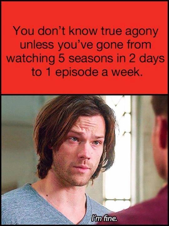 You don't know true agony unless you've gone from watching 5 seasons in 2 days to 1 episode a week.