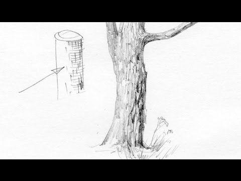 Как нарисовать кору дерева? Художник: Алексей Епишин. Рисунок карандашом.