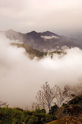 #ooty - Queen of hill stations in India.
