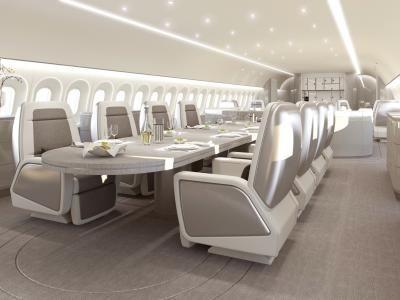 Boeing B787-8 Visionary Design | jetaviation.com