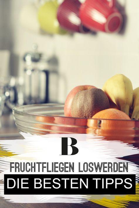 Fruchtfliegen Loswerden Die Besten Tipps Haushaltstipps
