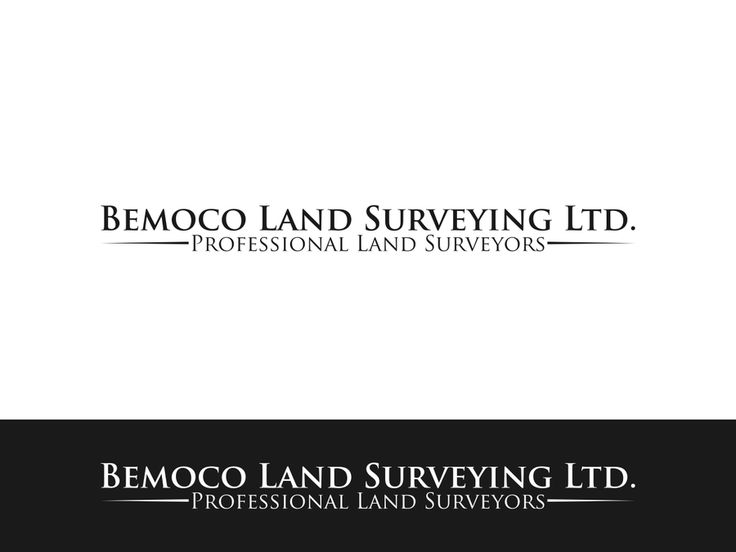 Create a logo for a professional land surveying company by NAYLA POPY