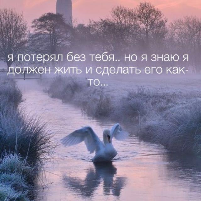 Жизнь любит потерял russian quotes