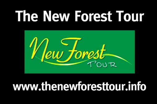 Video of the New Forest Tour