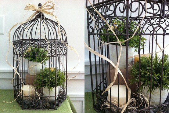 Cute way to use a birdcage!
