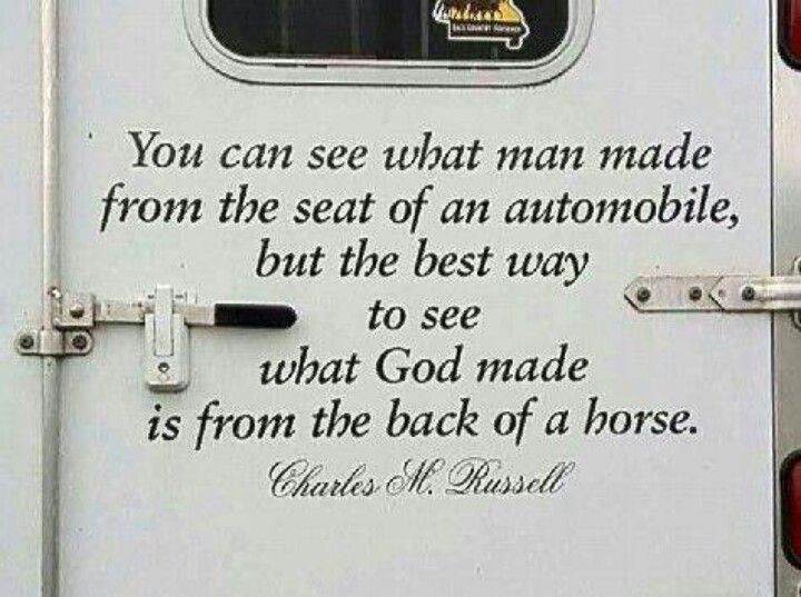 From the back of a horse